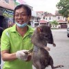 Overweight rat seen in world famous photo claims camera adds 20 pounds