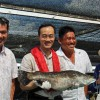 Fish refutes claim it was sedated, said PAP's Koh Poh Koon was the one on general anaesthesia