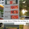 S'poreans react to oil prices surging above US$50 for 1st time in 2016