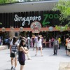 Conservative S'poreans demand S'pore Zoo investigate if they possess gay animals