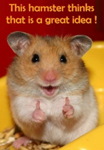 hamster-great-idea